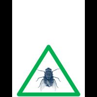 biologische bestrijding vliegen en vallen