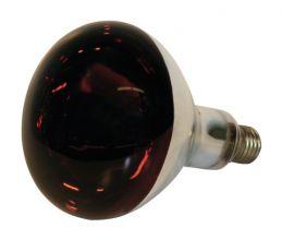 Lamp 150 Watt Rood (22244)